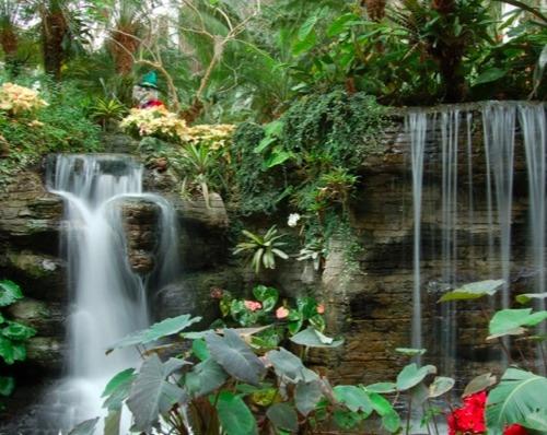lush garden 2
