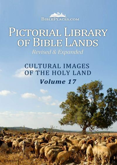 pictorial-library-cultural-images-of-the-holy-land