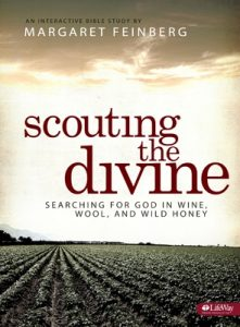 scouting-divine