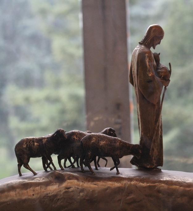 Discipleship: What Sheep Can Teach Us