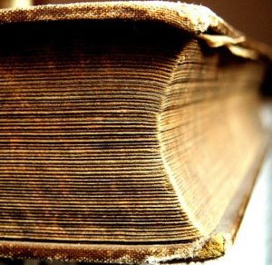 thick book slice