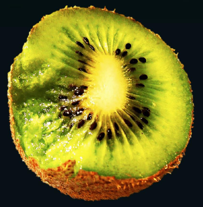 Kiwi dark bkd