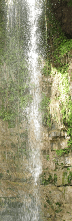 Long En-Gedi Waterfall