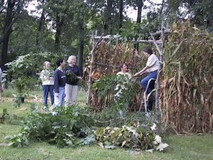 Sukkot - Feast of Abundance and Insecurity