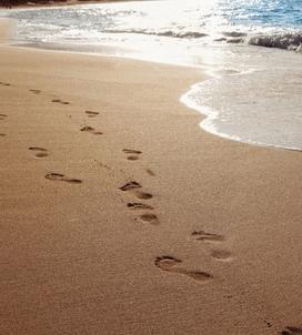 Following in the Footsteps of Jesus Retreat: Charleston, SC, Feb 6-8, 2018